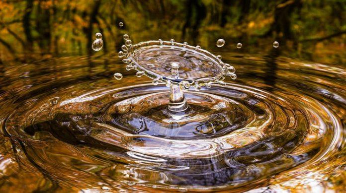 Harvesting water